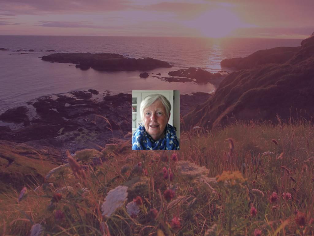 Helen Leigh, Manx registered tour guide